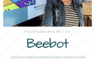 E-book 25 lesideeën met de Beebot
