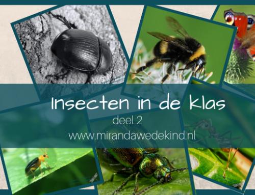 Insecten in de klas ~deel 2