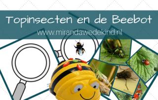 Topinsecten en de Bee-bot