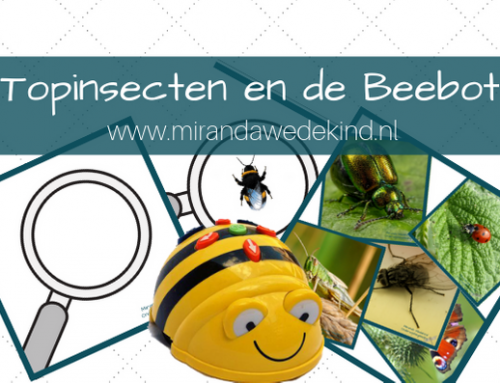 Topinsecten en de Bee-bot