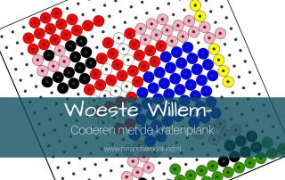 Woeste Willem- Coderen met de kralenplank