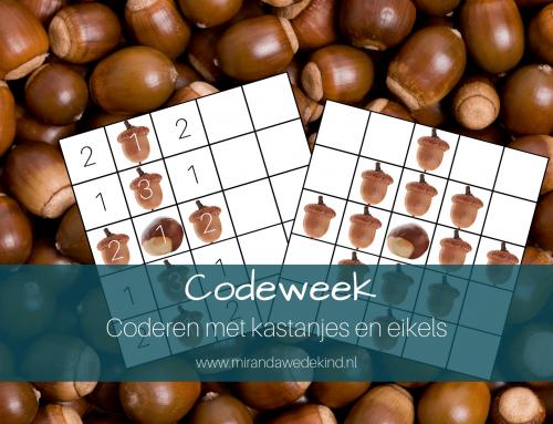 Codeweek: Coderen met kastanjes en eikels