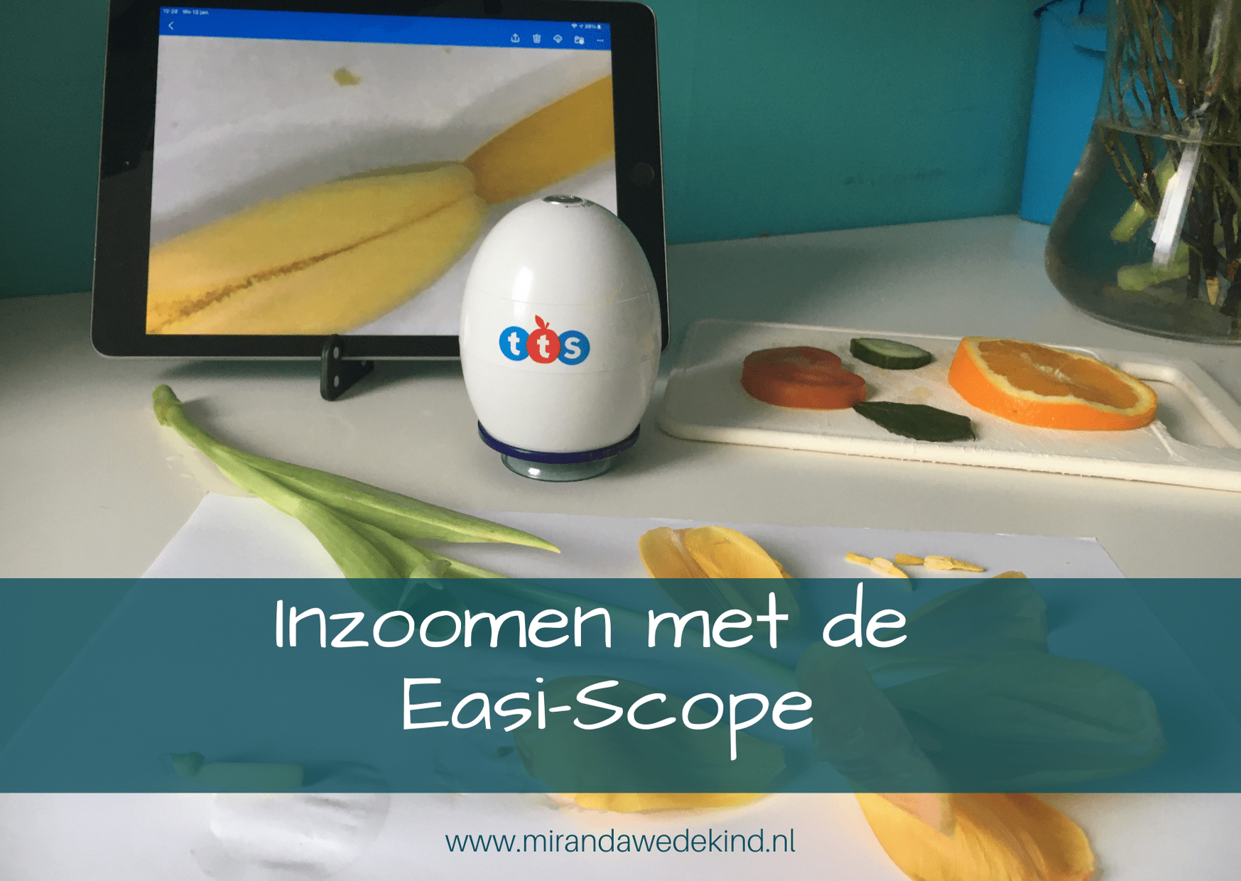Inzoomen met de Easi-Scope