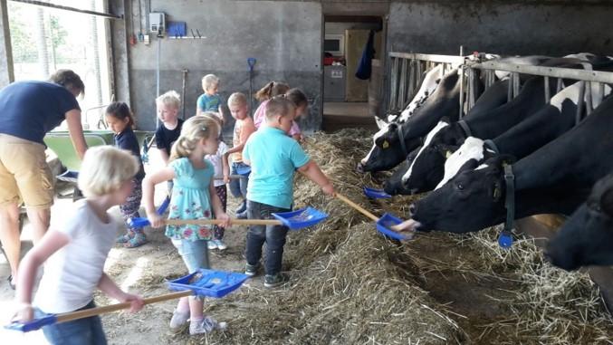 Themapagina Op de boerderij