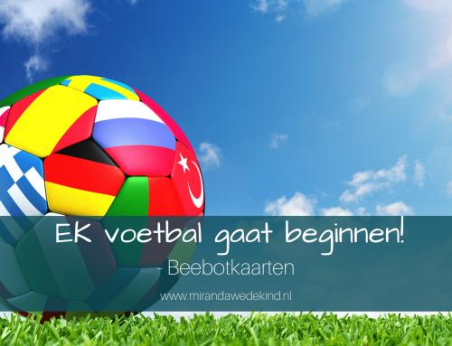 EK voetbal gaat beginnen!- Beebotkaarten